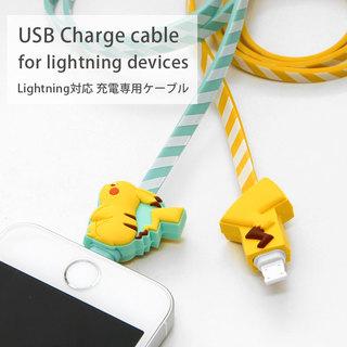 USBポートに接続し、Lightningコネクタ搭載機...