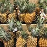 これからが旬!南国ハワイのフルーツを食べつくそう