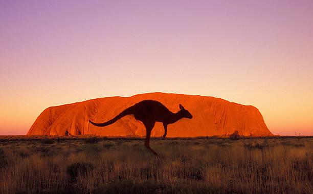 オーストラリアへ旅行に行くなら、どんな服装がおすすめ?旅のプロの添乗員に聞きました。