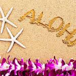 ハワイのオプショナルツアーを満喫!おすすめツアーを紹介!