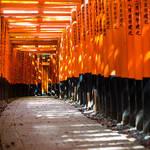 京都の風情を感じられる!おすすめのお土産雑貨特集