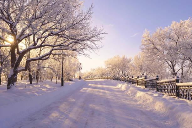 【2018年】冬だからこそ行きたい!冬の人気スポットトップ10を発表します。