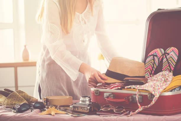 旅行スーツケースとりのコンセプト