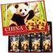 3.中国 パンダクッキー