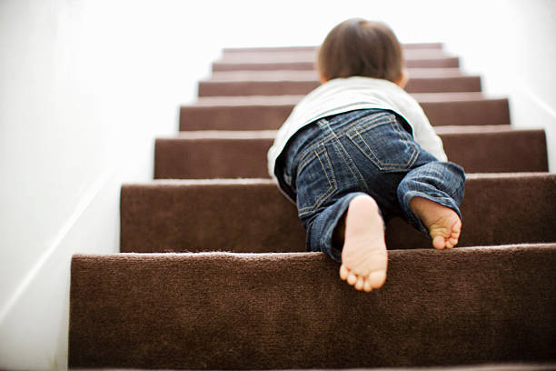 Baby mounts the stairs by c...