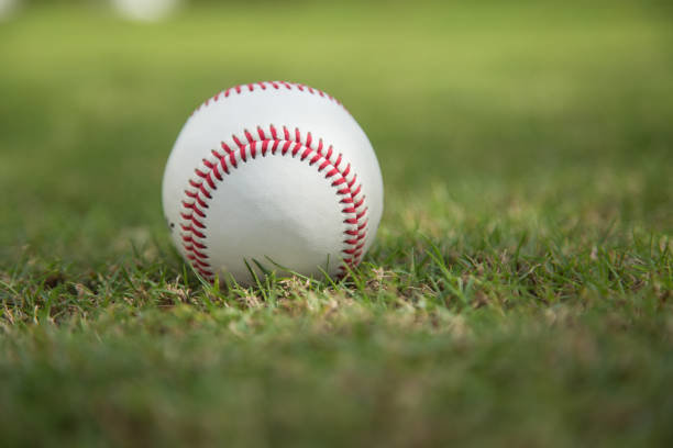 緑の芝生で野球
