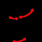 「腕と足の連動」と「関節」の関係性