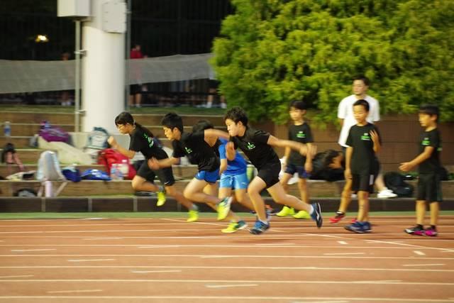 体育指導のスタートライン (493)