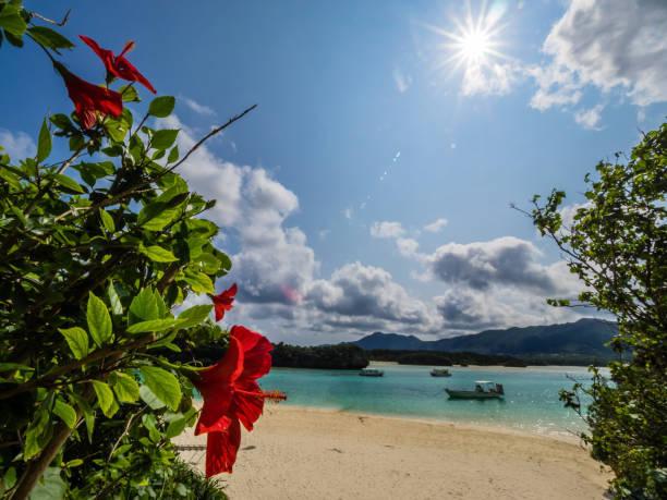 太陽の光と川平湾の海