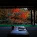 京都の静かな穴場スポット、庭園を巡る旅で癒されよう。