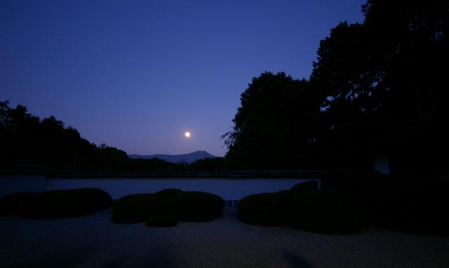 正伝寺の月見