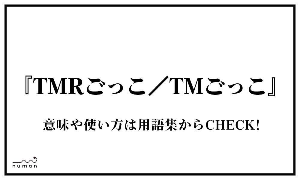 TMRごっこ/TMごっこ(てぃーえむれぼりゅーしょんごっこ)
