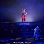 舞台『刀剣乱舞』悲伝 結いの目の不如帰|明治座特別公演ゲネプロレポート