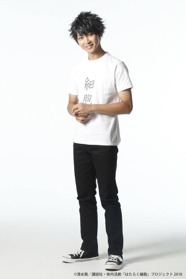 体内活劇『はたらく細胞』全キャストビジュアル公開! numan4