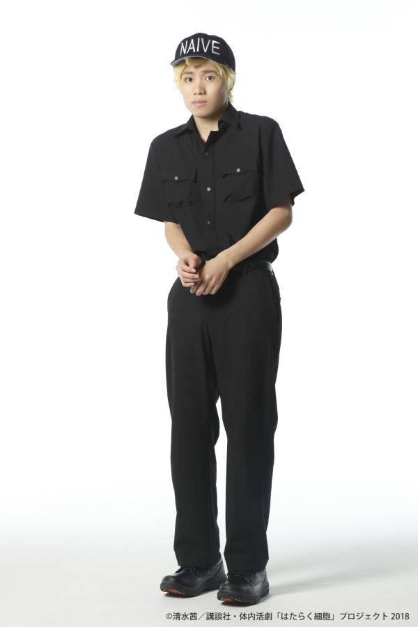 体内活劇『はたらく細胞』全キャストビジュアル公開! numan7