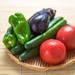 季節の野菜通信 vol.9