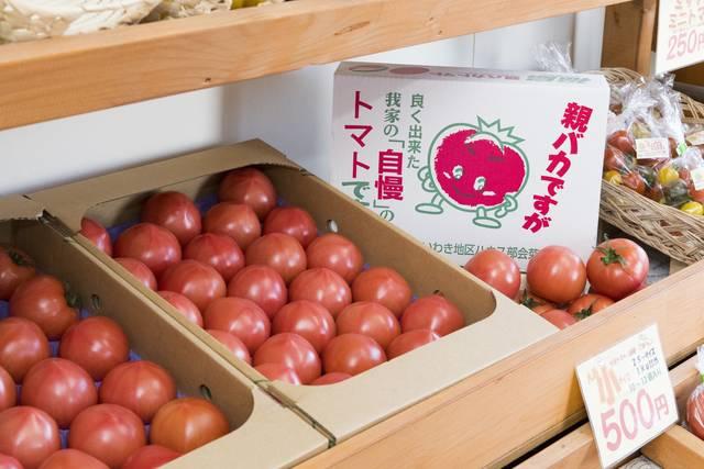 親バカトマトは助川農園さんが営む直売所やオンラインショップよりお求めいただけます