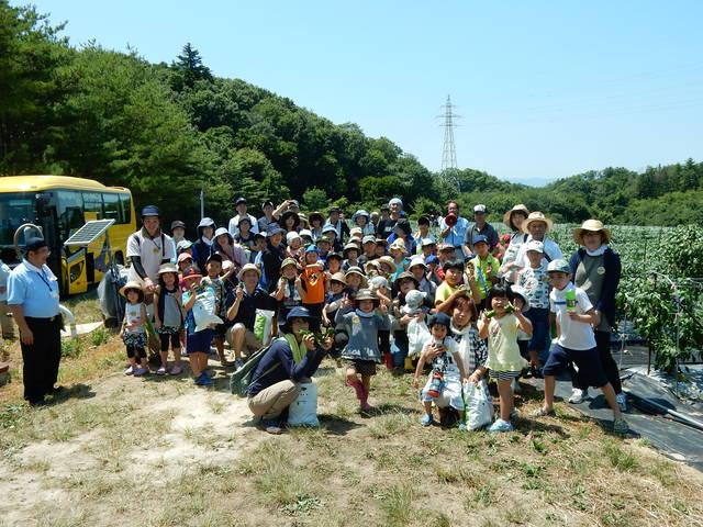 ピーマンの収穫体験をする参加者