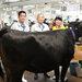 第30回JAグループ和牛育成管理共進会
