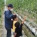 親子で地域の農業に親しむ農業体験ツアー