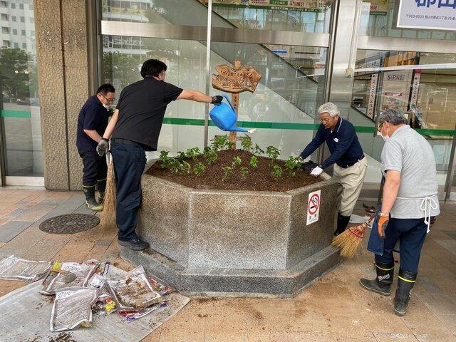 ザルビアの苗を植える職員ら