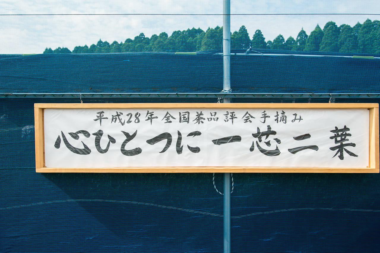 宮崎の日本茶専門店「新緑園」全国茶品評会において5年連続入賞
