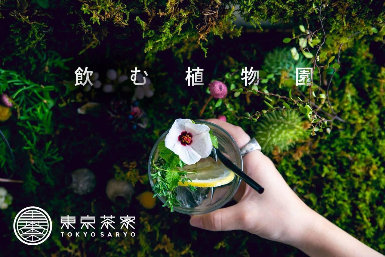 """【東京茶寮が""""植物園""""に】体験型アートイベント「飲む植物園@東京茶寮」が4日間限定で開催!"""