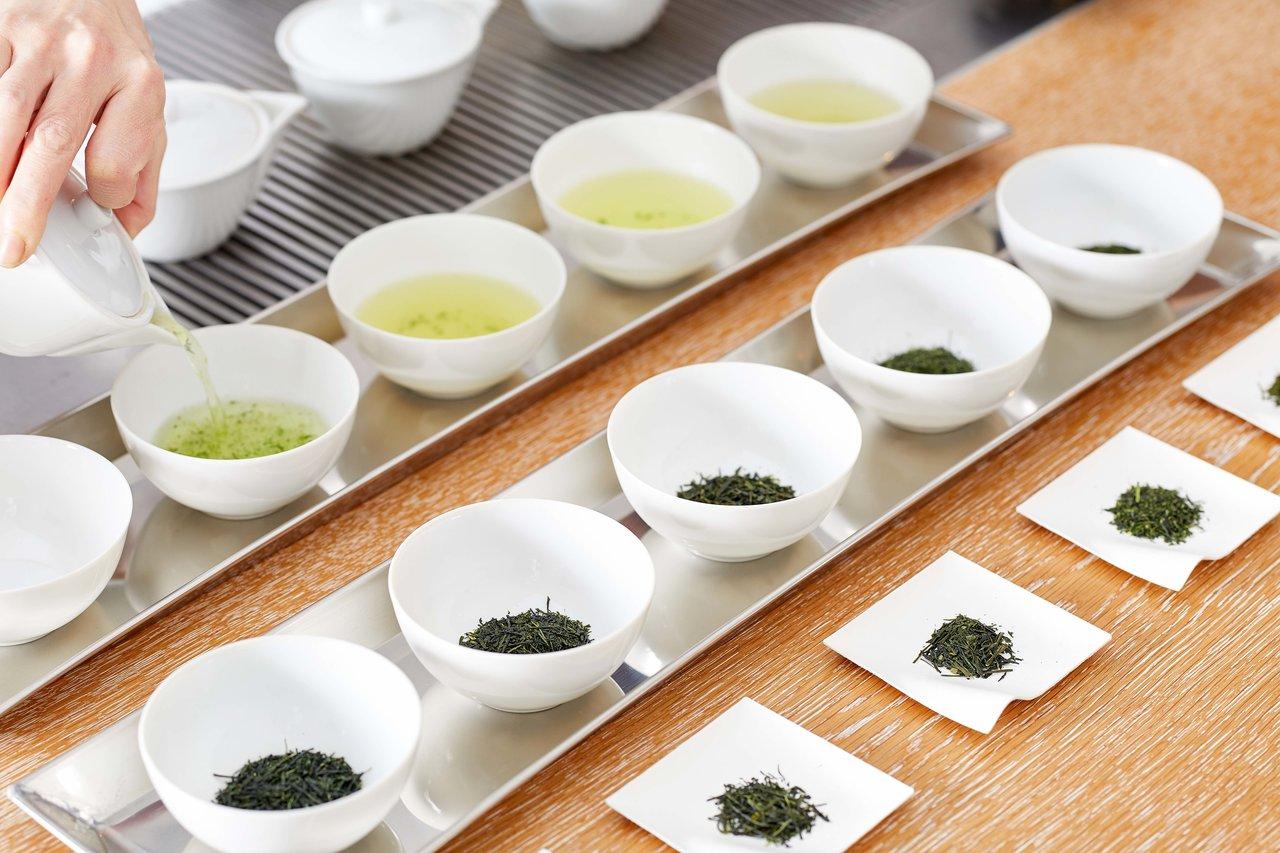 山本山、煎茶の奥深さを体感できる「煎茶の飲み比べ」を3月20日(金・祝日)に開催