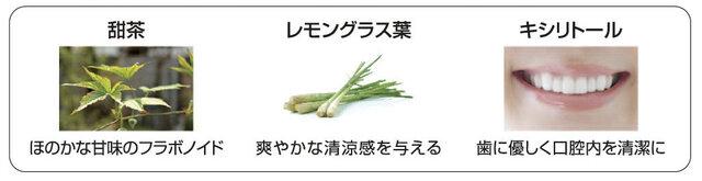 ポイント2)こだわりの厳選「国産・植物成分」