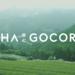 SHOP | CHAGOCORO | 文化をインスパイアするお茶メディア
