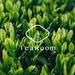 株式会社TeaRoom|『お茶で、日本文化の価値を世界へ証明する』