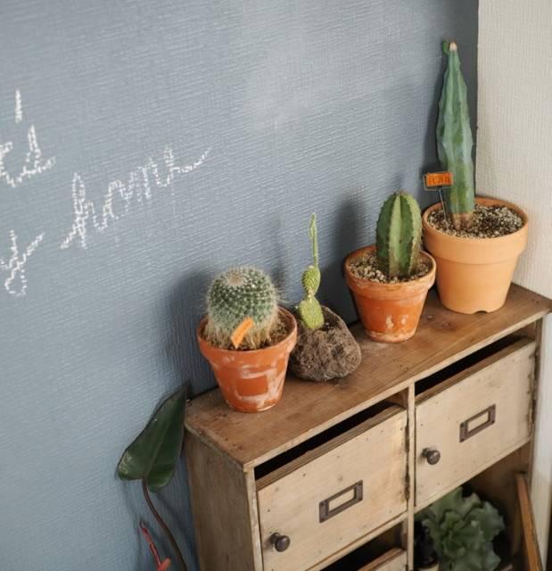 ブルーグレーの黒板塗料をペイントした壁    ペンキ使...