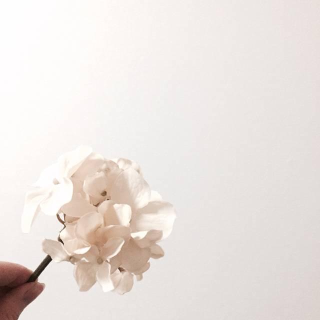 リアルな紫陽花の造花もキャンドゥさんで発見!
