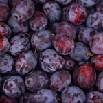 需要が高まる梅、梅干しなどの食材とメーカーの取り組み