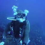 プライベート感満載!伊豆No1のソフトコーラル。知る人ぞ知る熱川の海の魅力。 熱川ダイビングサービス野口和久さん