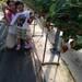 静岡産いちごへのこだわりと、いちご作りの裏側をあなたへ。いちごらんど中西 中西勝威さん - いずみーる