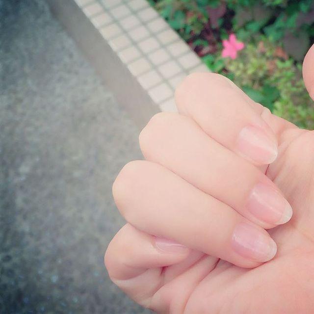 吉野香織さん(@kaori__yoshino) • Instagram写真と動画 (1321)