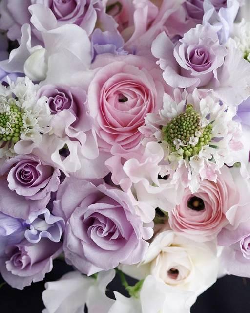 """chiaki Yoshioka on Instagram: """"やっと咲いたSpバラ「リトルシルバー」#淡い紫 #ラベンダー #バラ #アレンジメント #purple #violet #pink #flowers #札幌 #紫紺"""" (19974)"""