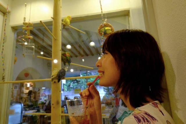 #彼女と○○なう が進化!ストーリーが誕生!? SKE48 高柳明音のブログが話題に!