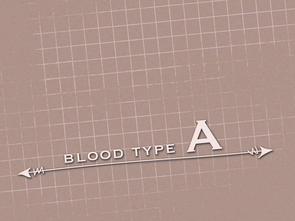 型 占い 血液 星座 相性