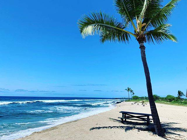 "asuka on Instagram: ""♡🏝🏝🏝・・・・#🏝#🌴#hawaii#beach"" (556853)"
