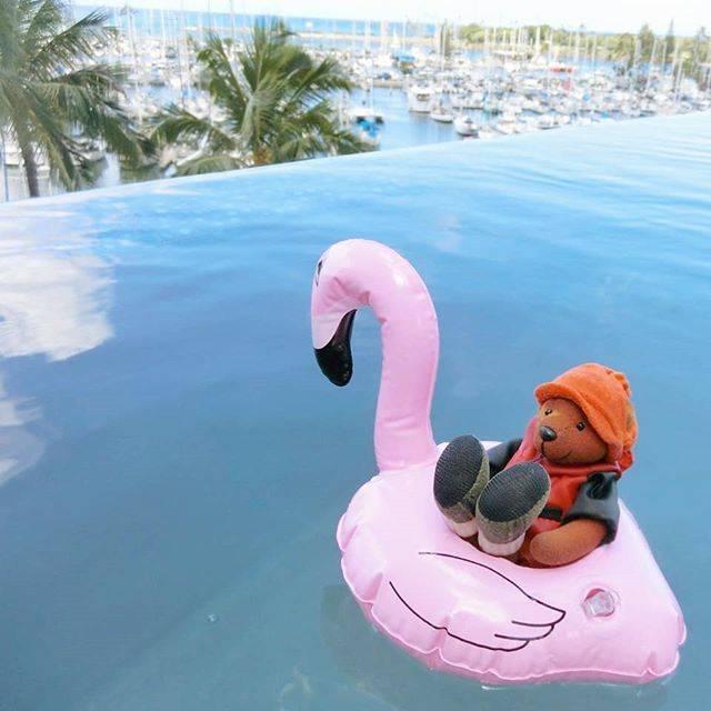 """旅猿69 on Instagram: """"#ハワイ69 インフィニティプールで、のんびり。  このあと、浮き輪ひっくり返返って、くまさんが濡れちゃった💦ごめんね😭  @princewaikikijp #PRINCEWAIKIKI#プリンスワイキキ #インフィニティプール#infinitypool  #旅猿…"""" (568316)"""