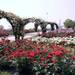 万博記念公園ローズフェスタ | 万博記念公園