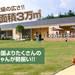 世界の名犬牧場|日本最大級!群馬のドッグラン・ドッグカフェならここ!