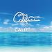 THE CALIF KITCHEN OKINAWA | 沖縄北谷の海の水平線を一望の絶景カフェ&レストラン