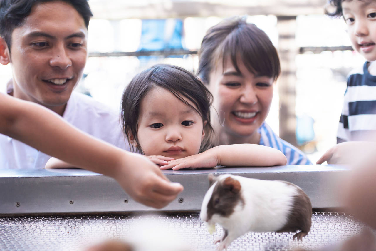 赤ちゃんの動物園デビュー!一緒にお出かけできる時期や注意点