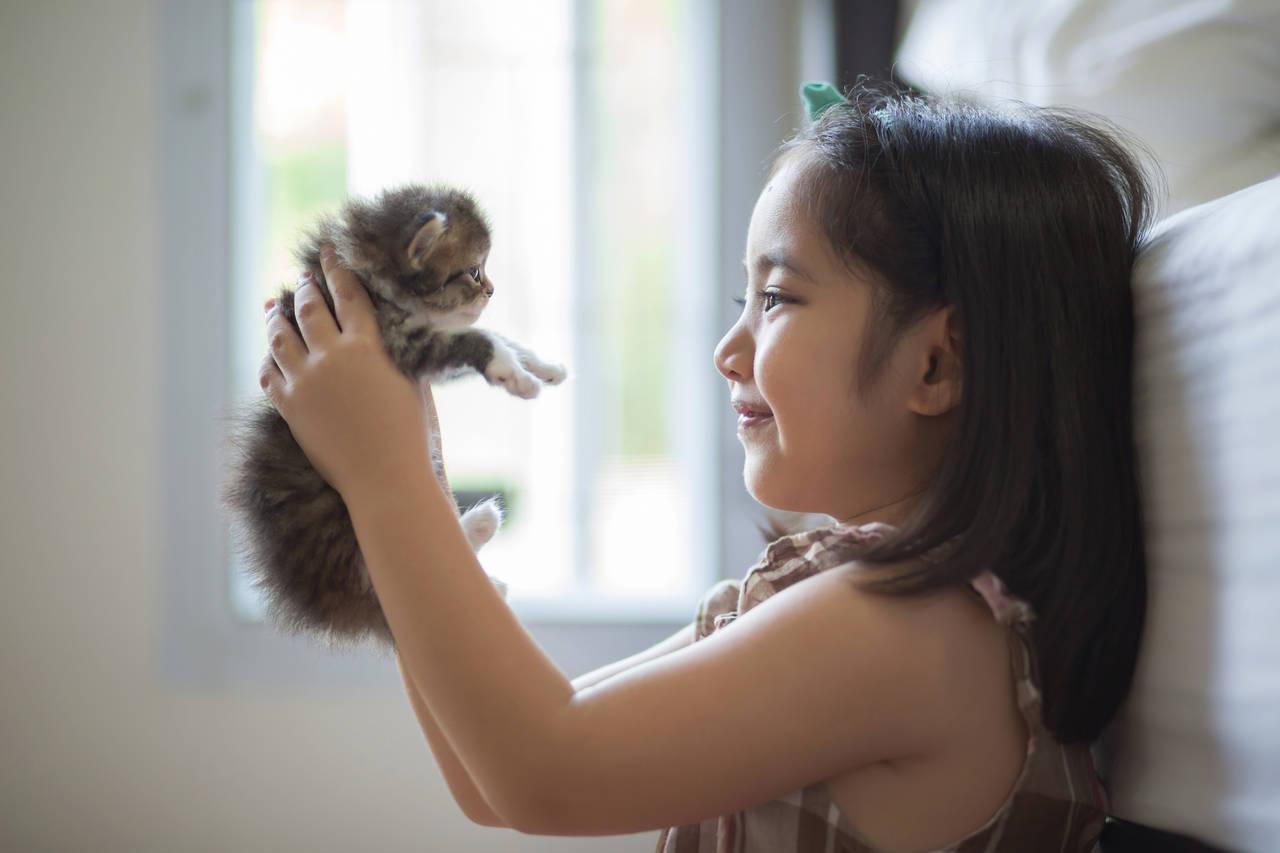 ペットが育児に与えるメリットを知ろう!飼うときの注意点もご紹介