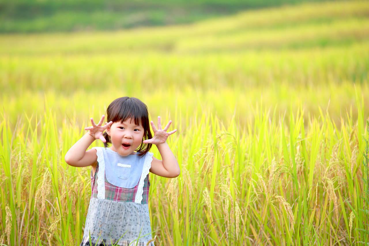 秋田県の子育て事情を知ろう!支援制度やお出かけスポットの紹介