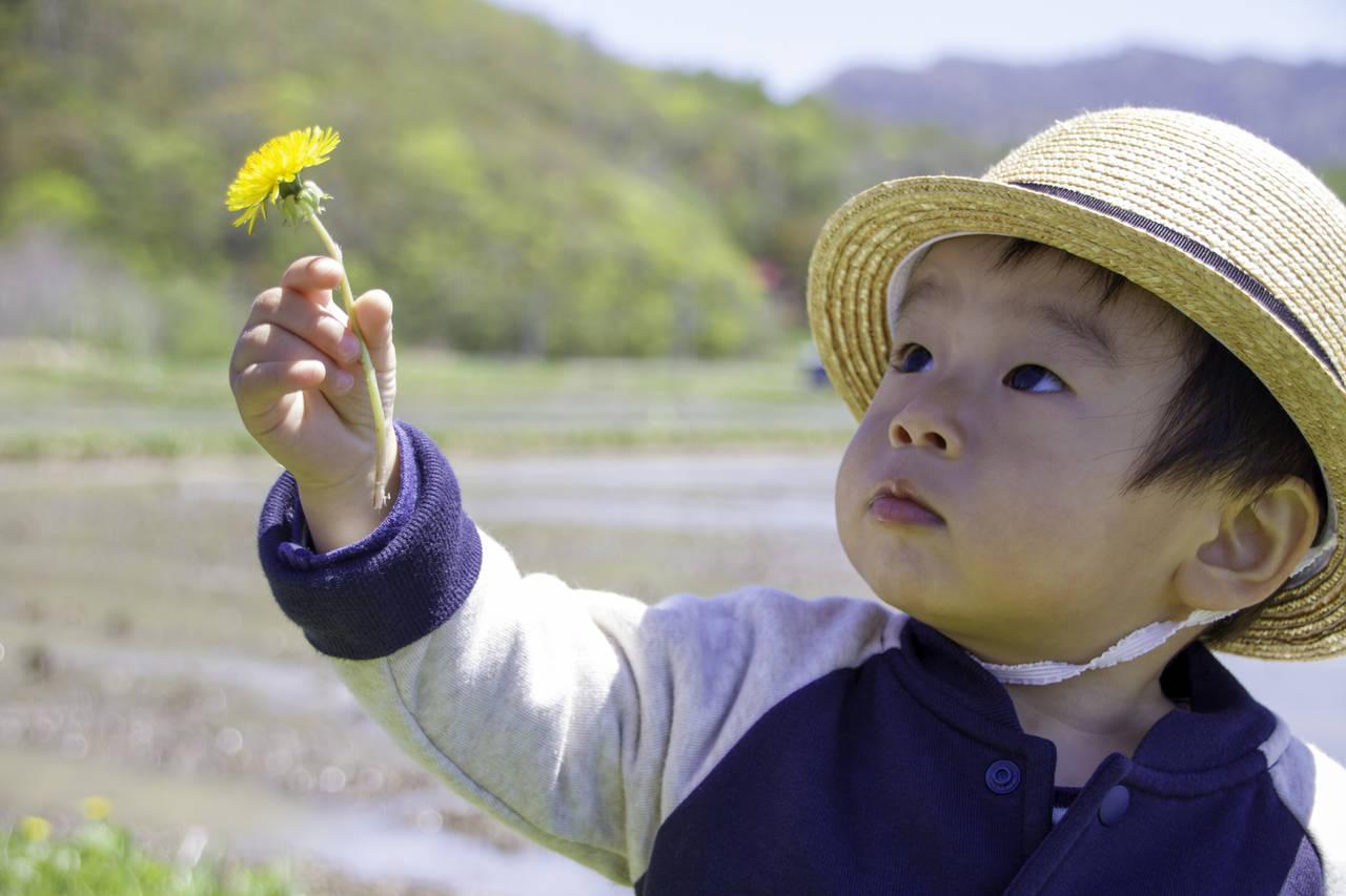 子育てママ必見!1歳からできる自宅教育。成長過程や教室で学ぶこともご紹介
