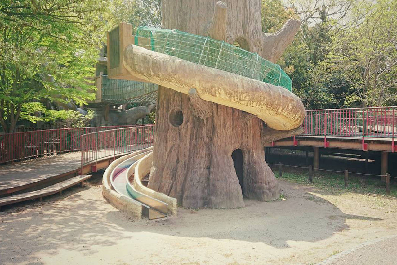 【愛知】大きなツリーハウスで遊べる「あいち健康の森公園」